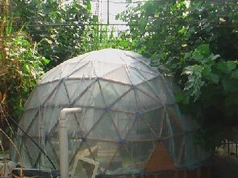 鸟巢生态温室建造技术详细解读和分析