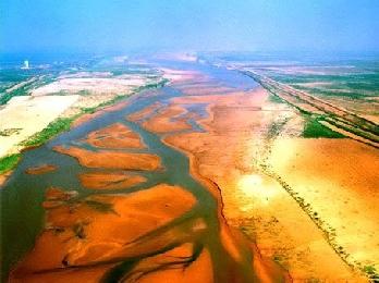 首届黄河三角洲高效生态农业投洽会9月举行