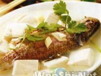 春季滋补首选:鱼汤