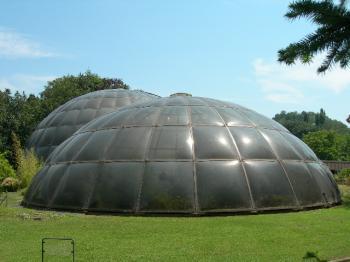 苏黎世温室植物园