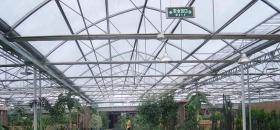 温室餐厅内景