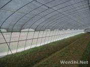 温室大棚设施设备通风的目的