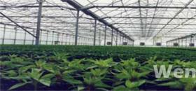自动化育苗温室成青岛市农业观光园